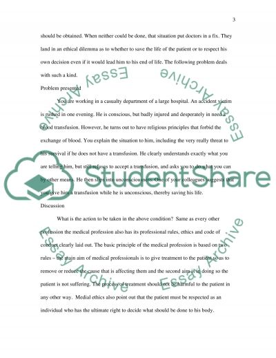 Professional Accountability essay example
