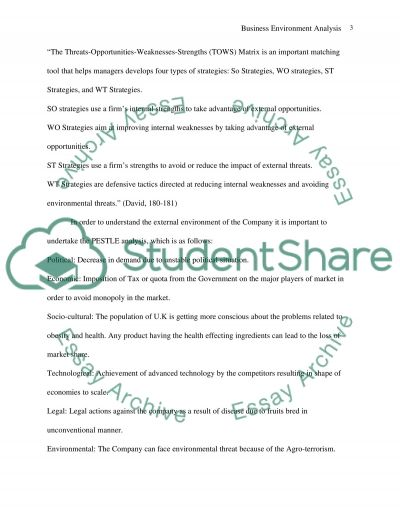 Business Environment Analysis essay example