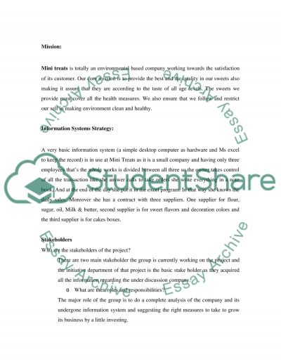 Management Information systems- Business company system essay example