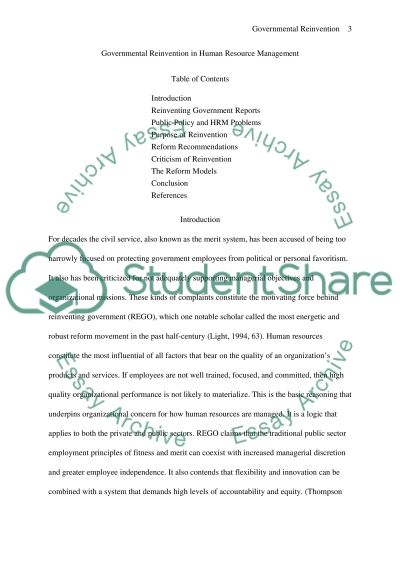 Governmental Reinvention and Privatization essay example