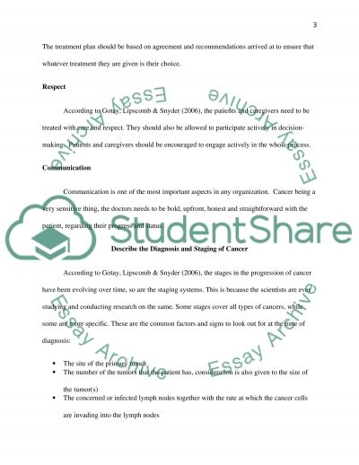 Approach to Care Essay example