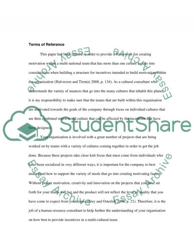 Individual Report essay example