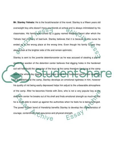 First paper- about Mr.Sir. Second paper- about Stanley Yelnats. Last two paper summery of the book HOLES