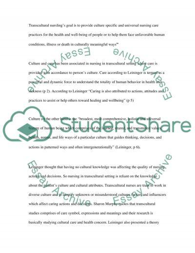 Quality Nursing Care essay example