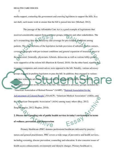 Health care system essay example