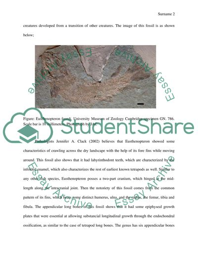 Fossils and their interpretations essay