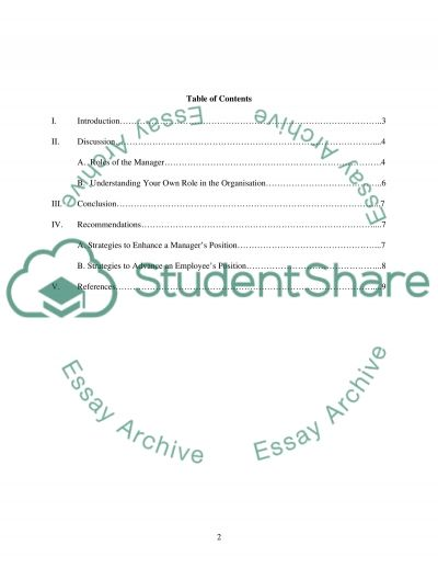 Roles of the Manager in organization essay example