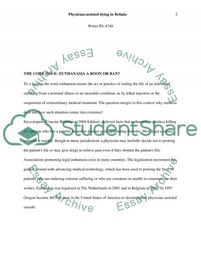 The word Euthanasia essay example