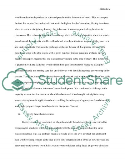 Final assingment essay example