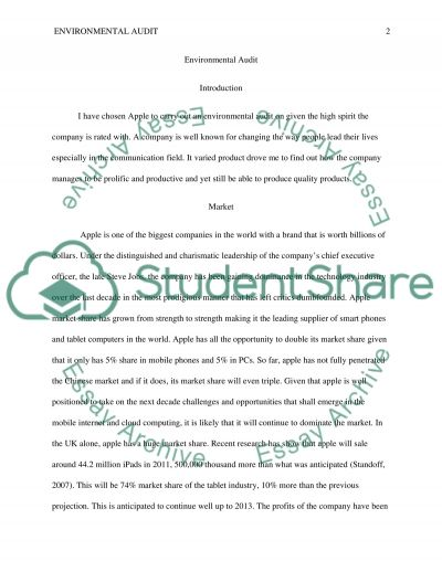Marketing: Environment Audit essay example