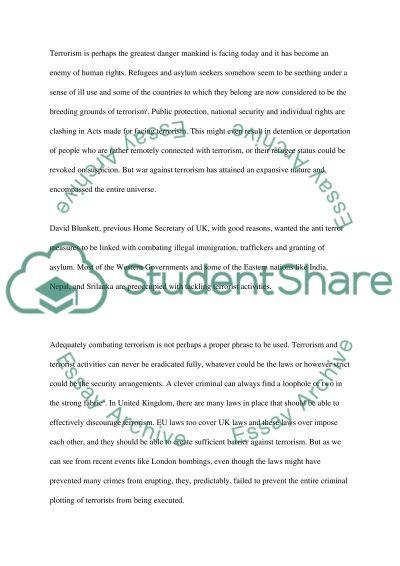 Terrorism essay example