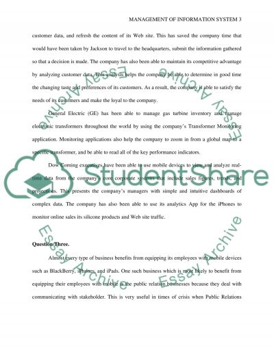 Management of Info Systems essay example