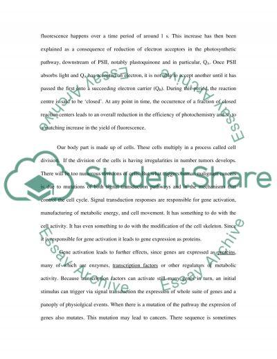 Bio Comprehensive essay example