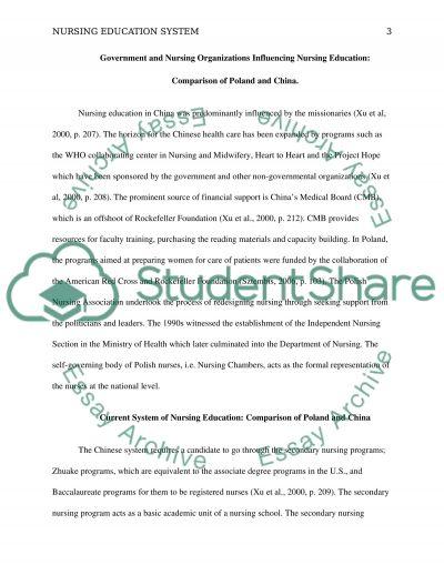 Nursing Education System essay example