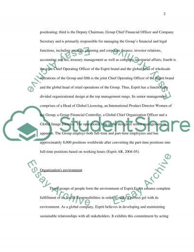 Organization Theory & Design Essay