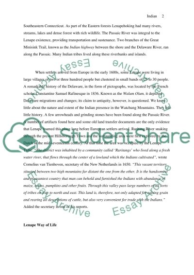 Indian Reservation in the Watchung Mountains essay example