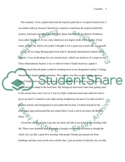 The Best Vacation I Ever Had essay example