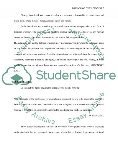 Professional standards Essay example