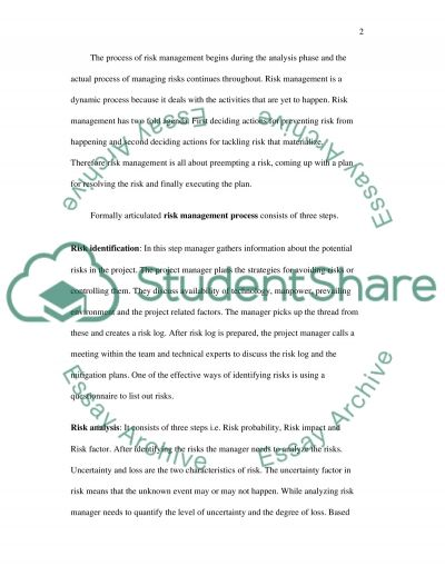 Project management risk management essay example