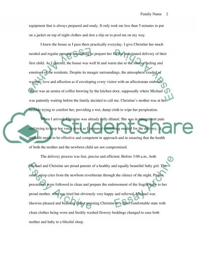 Life as a midwife (personal writing) essay example