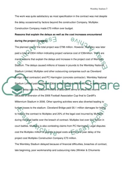 Project Management Strategic Issues essay example