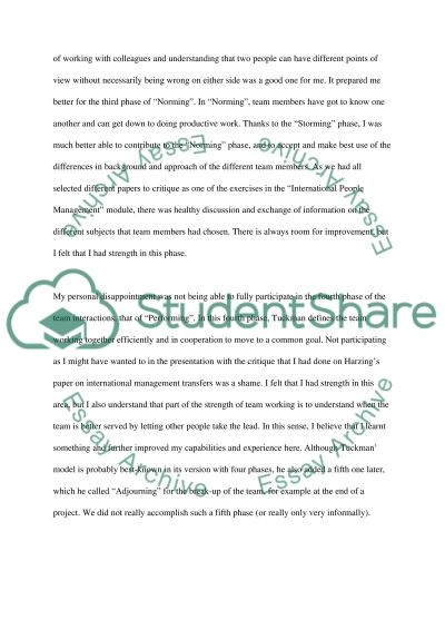 International People Management essay example