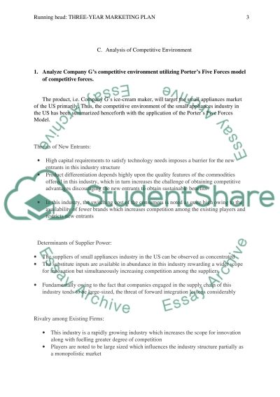 three-year marketing plan Essay example