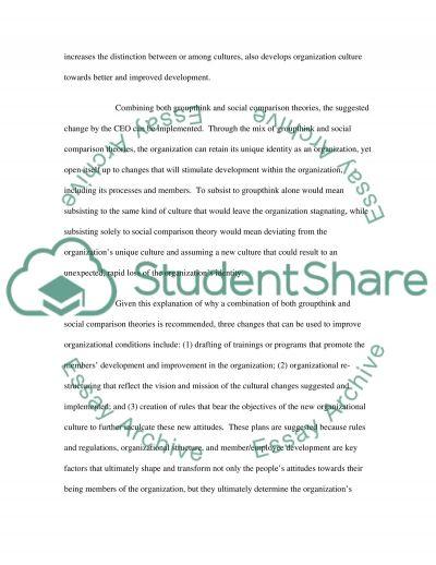 Strategic Plan Essay essay example