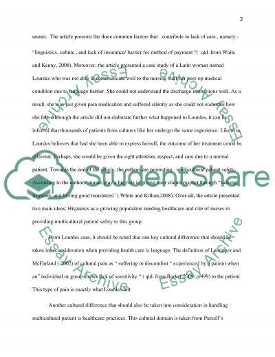 Nursing: Cultural Sensitivity essay example