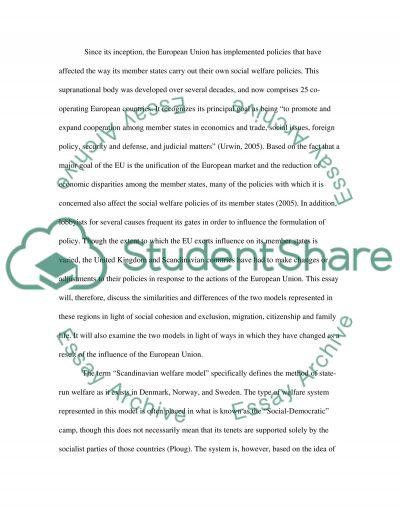 Social Welfare and Social Work Practice essay example