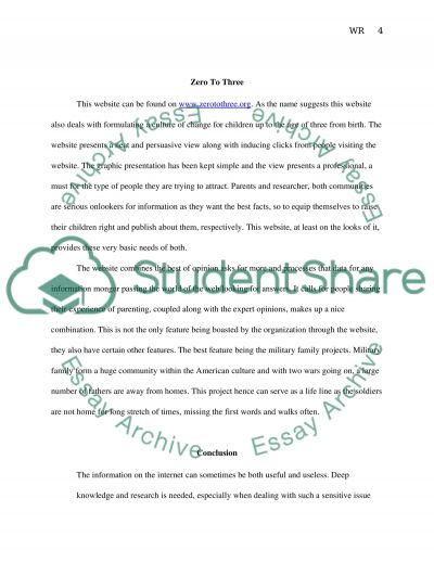 Websites review essay example