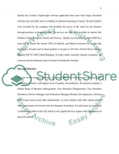 E-Business Strategy essay example