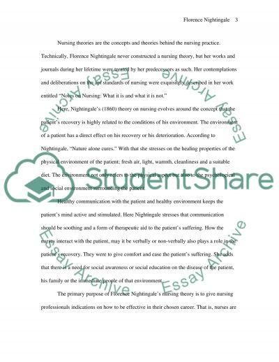 Nightingales Nursing Theory essay example