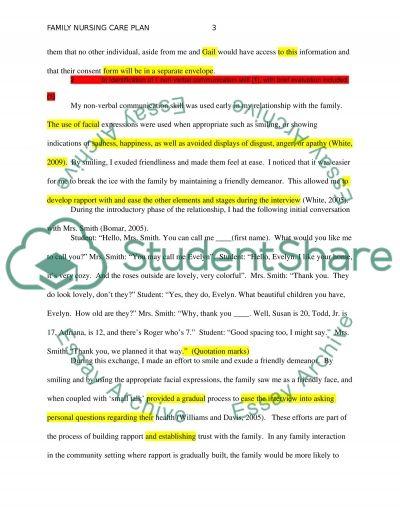 CHN: Family Nursing Care Plan essay example
