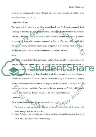 Global Marketing Essay example