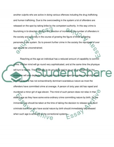 The Correctional System essay example