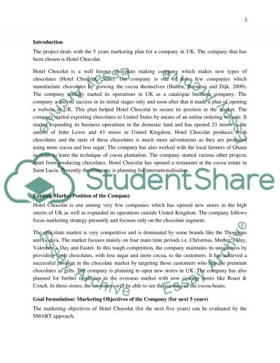 Five Years Marketing Plan essay example