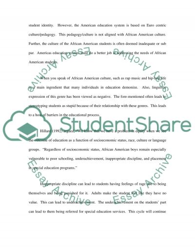 Education Programs for African American Students essay example