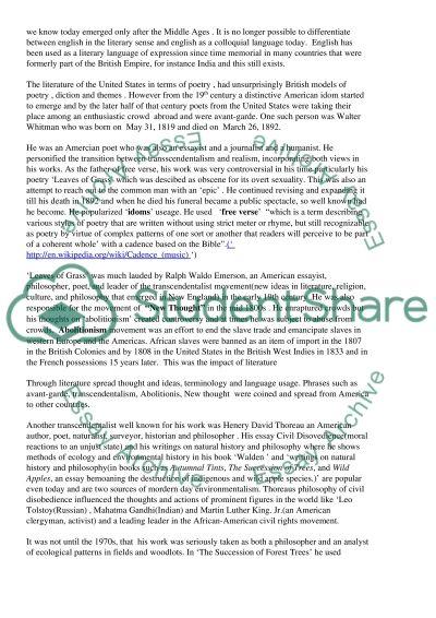 American Literature Term Paper essay example