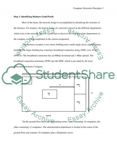 Computer Network Principles essay example