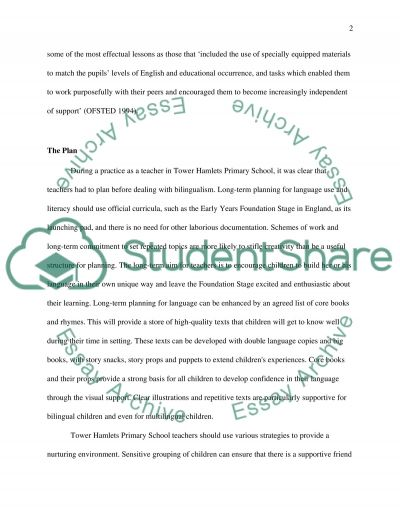 Policy and Practice In the Education of Bilingual Children essay example