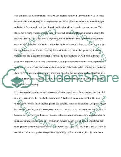 Budgets and Budgeting Process essay example
