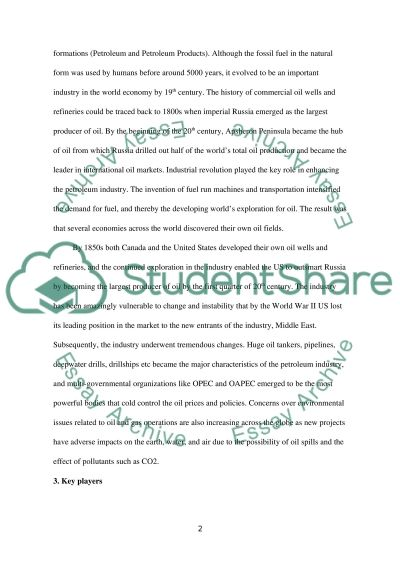 Industry report essay example