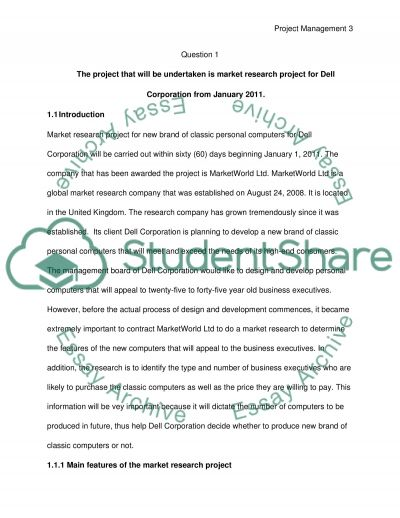 Project Managment essay example