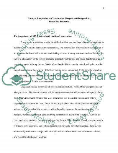 M & A essay example