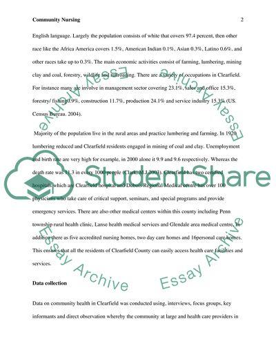 Nursing research community assessment paper