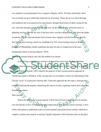 Concept Analysis essay example