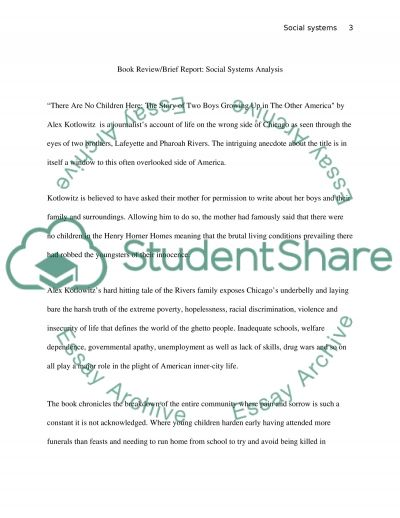Book ReviewBrief ReportSocial Systems Analysis essay example