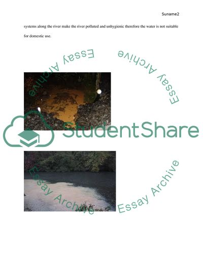 Water Pollution Essay Example  Topics And Well Written Essays    Water Pollution Help Filling In A Business Plan also Spm English Essay  Who Will Write Assignment