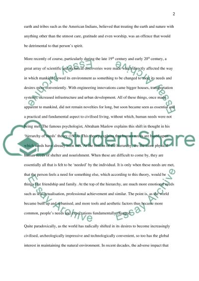 Engineering and Technology versus the natural Environment essay example